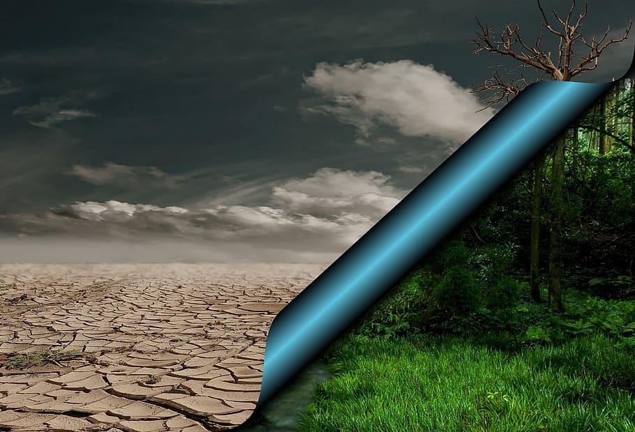Limitare il riscaldamento globale a +1,5° è possibile